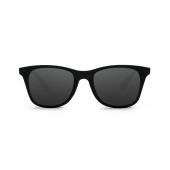 Очки солнцезащитные Xiaomi TS Traveler STR004-0120